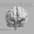Custom Low Poly Brain, 124x98x105 mm, PLA white