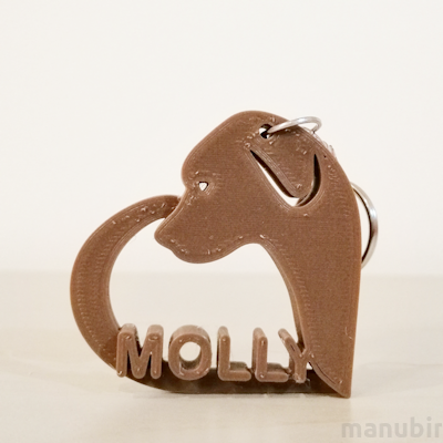Custom 3D Printed Gift - Dog Keychain with Name