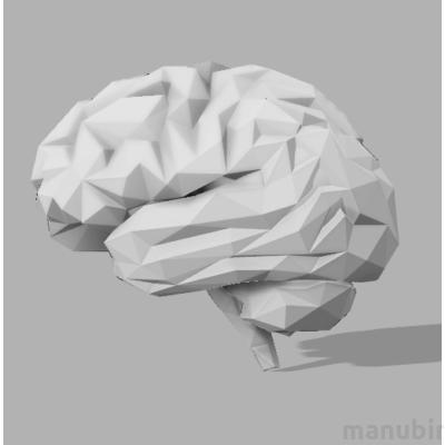 Egyedi agy
